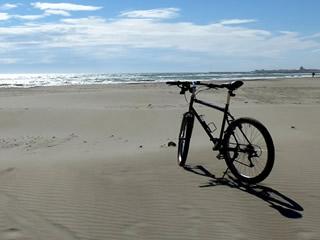 Radtouren in der Camargue – 2. Teil