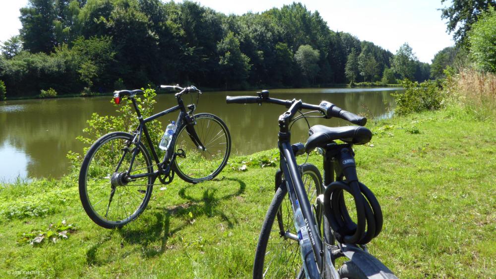 Radfahren bringt Vorteile für die Gesundheit