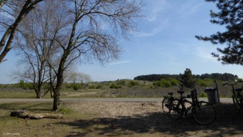 Bike ride in the dunes of Bloemendaal