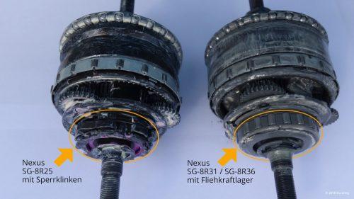 Nexus SG-8R25 mit Sperrklinken und Nexus SG-8R31 / 36 mit Fliehkraftlager im Vergleich